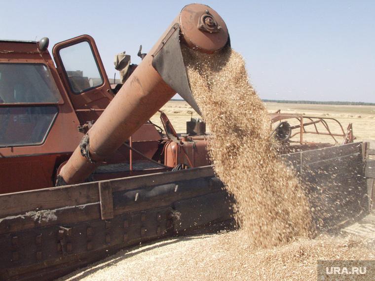 Клипарт. Екатеринбург, комбайн, пшеница, уборка урожая, зерно
