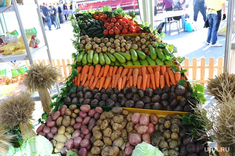 Агро 2014. Еда. Челябинск, овощи