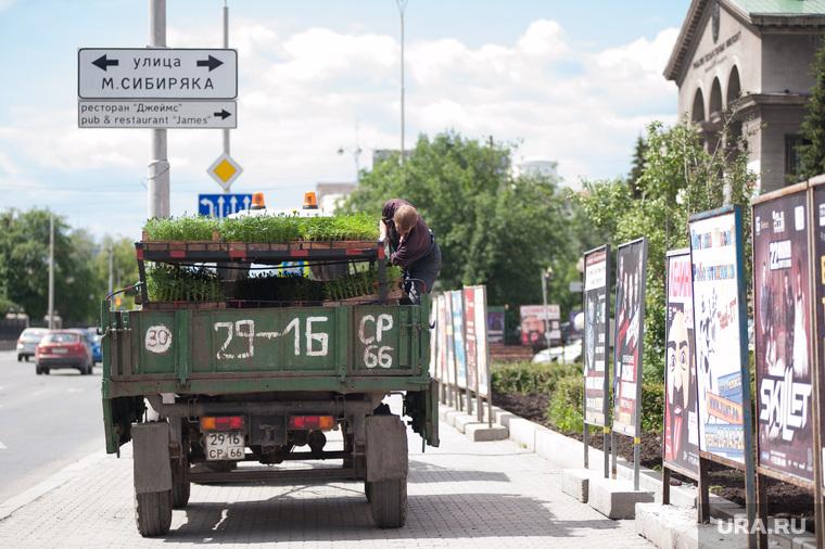 Благоустройство Екатеринбурга, ургу, улица ленина, центр города, высадка цветов, улица мамина сибиряка