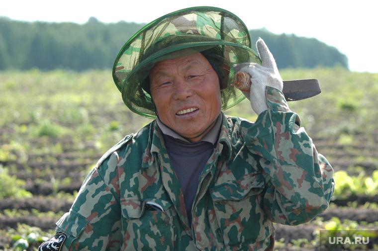Китайцы. Гастарбайтеры. Сельское хозяйство. Архив 2007. Челябинск., китаец