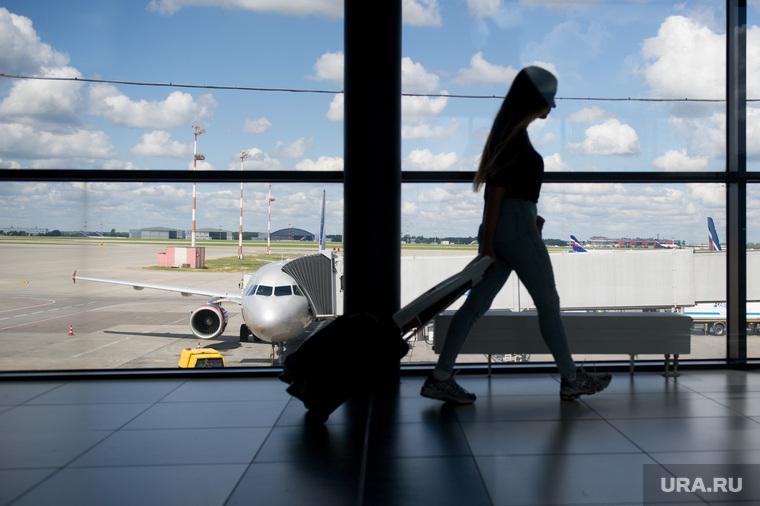 Аэропорт Шереметьево. Москва, багаж, турист, шереметьево