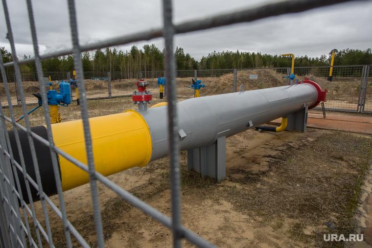 Газопровод рядом с дачами. Сургут, газпром трансгаз сургут, газопровод