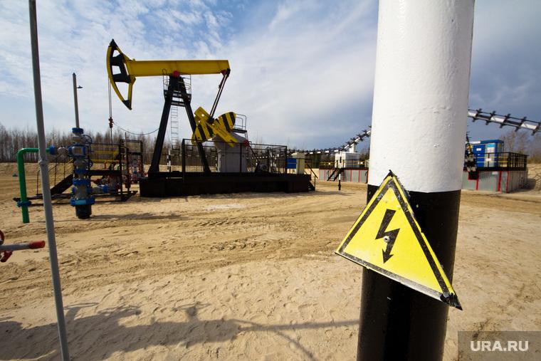 Роснефть. Нижневартовск., нефть, роснефть, качалка, куст, высокое напряжение, добыча