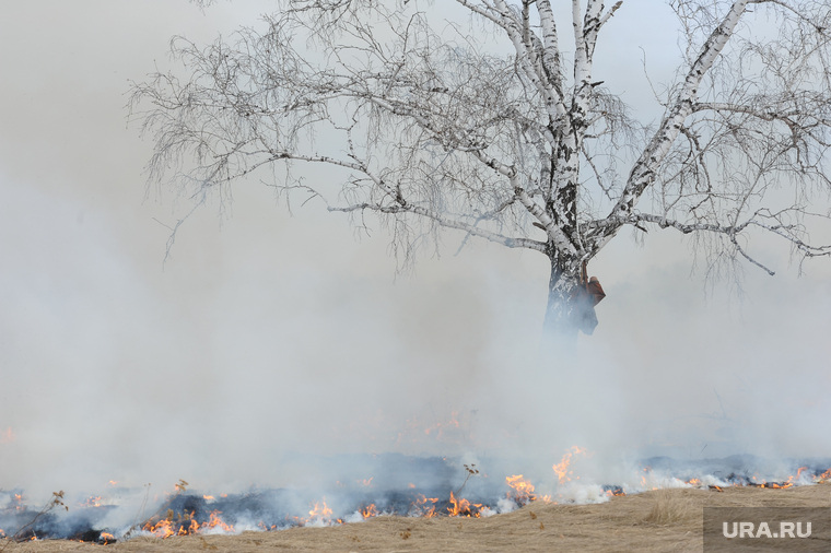 Лесные пожары. Учения МЧС. Челябинск, лесной пожар