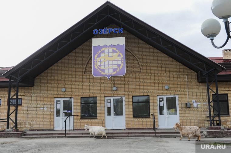 Суд Цыбко Озерск Челябинск, озерские козлы