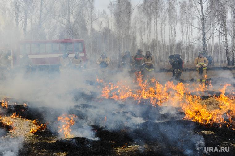 Совместные учения МЧС Челябинской и Курганской областей по тушению лесных пожаров. Челябинск