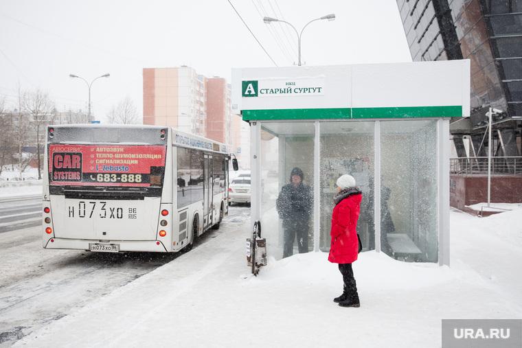 Автобусы и автобусные остановки. Сургут