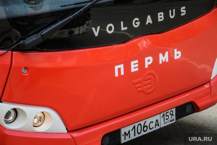 Новые автобусы. Пермь