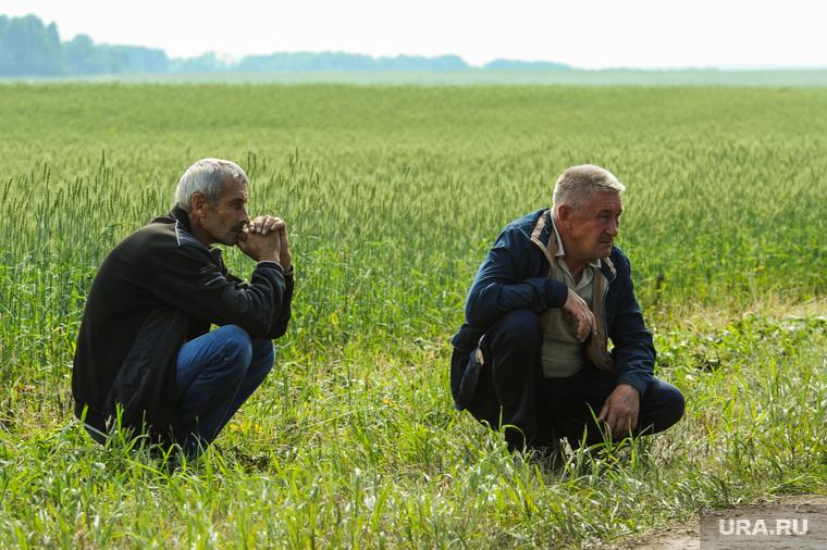 День уральского поля 2018. Чебаркульский район, Челябинская область