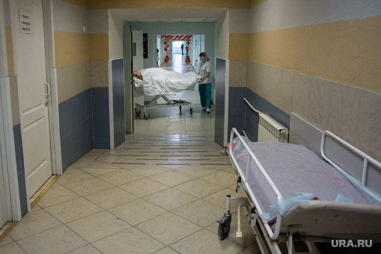 хранить делают ли в 10 больницы бесплатные оборты эндометрия попадают