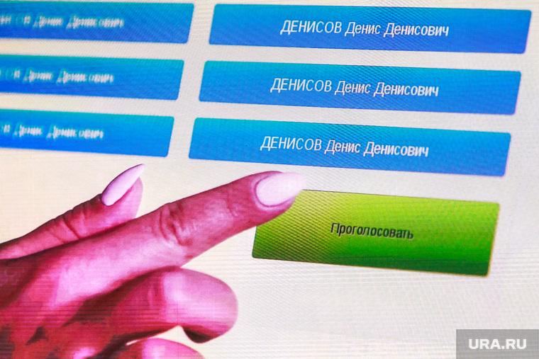 В ЦИК допустили проведение выборов в Госдуму в 2021 году через Интернет