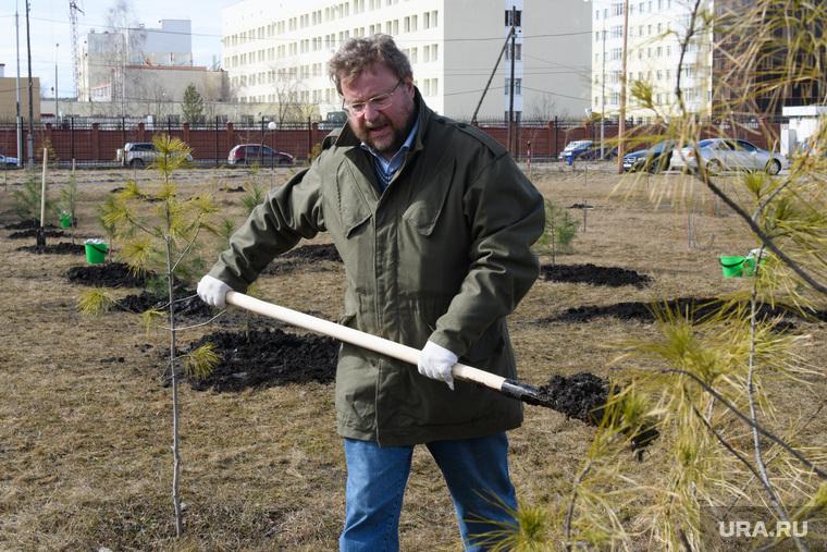 Правительственный субботник у Госпиталя ветеранов всех войн. Екатеринбург , дубичев вадим, земляные работы, посадка деревьев