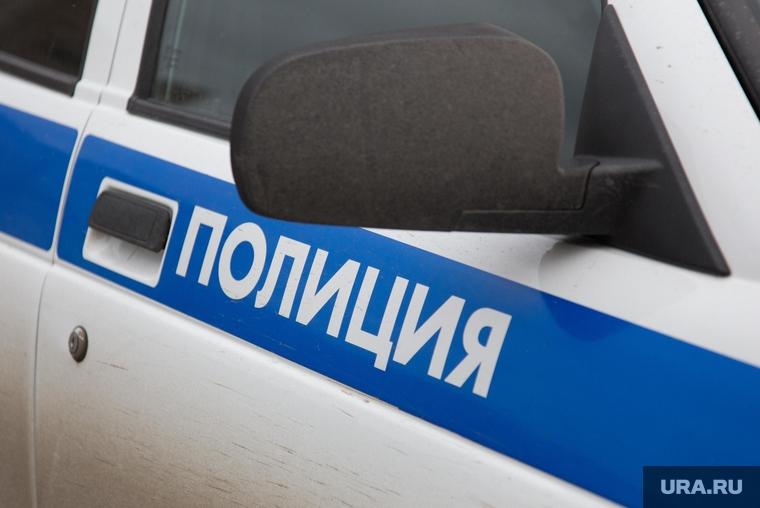 В Прикамье хулиганы напали на девушку-кота и пытались отобрать у нее голову. ВИДЕО
