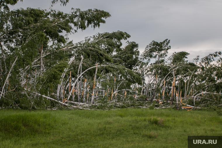 В ближайшее время на Свердловскую область обрушится ураган