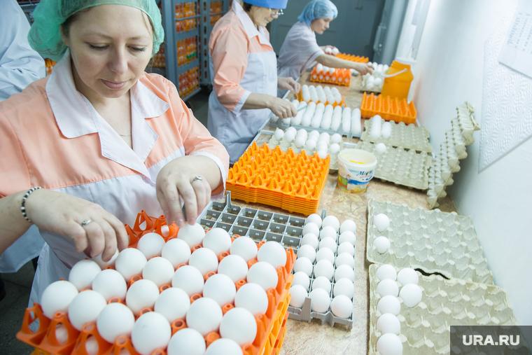 К подорожанию яиц<br>Россиян уличили в чрезмерном потреблении яиц...