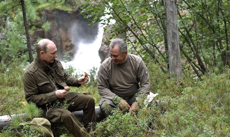 Путин отдыхает в тайге с Шойгу. Министр показал президенту свои поделки из  веток. Видео