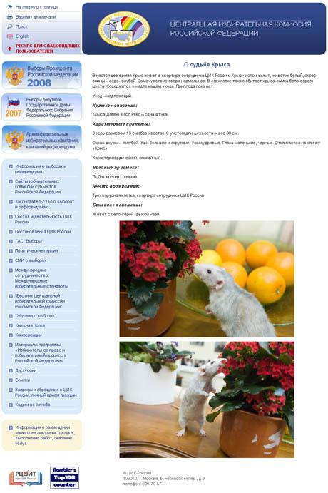 На сайте ЦИК РФ появилось странное сообщение: посетителям одного из самых официальных ресурсов Рунета рассказали «о судьбе Крыса»