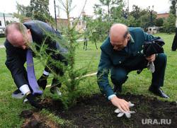 Дубровский садит дерево. Челябинск., дерево, дубровский борис