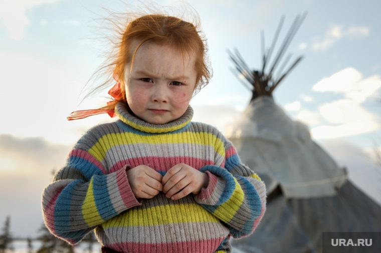 Быт Ямальских оленеводов. , ребенок, чум, оленеводы, ханты, аборигены, манси, дети, девочка, кмнс