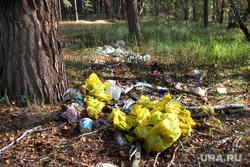 Осенняя природа, разноеКурган, мусор в лесу