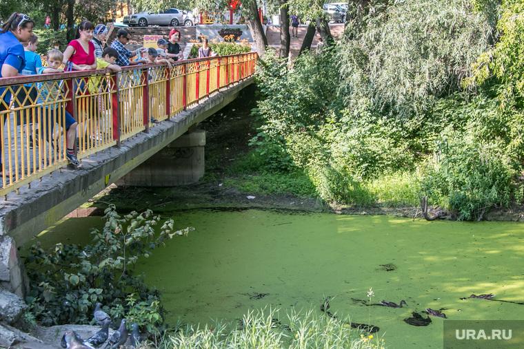 ЦПКиО города Кургана, мост, отдыхающие, речка битевка, цпкио