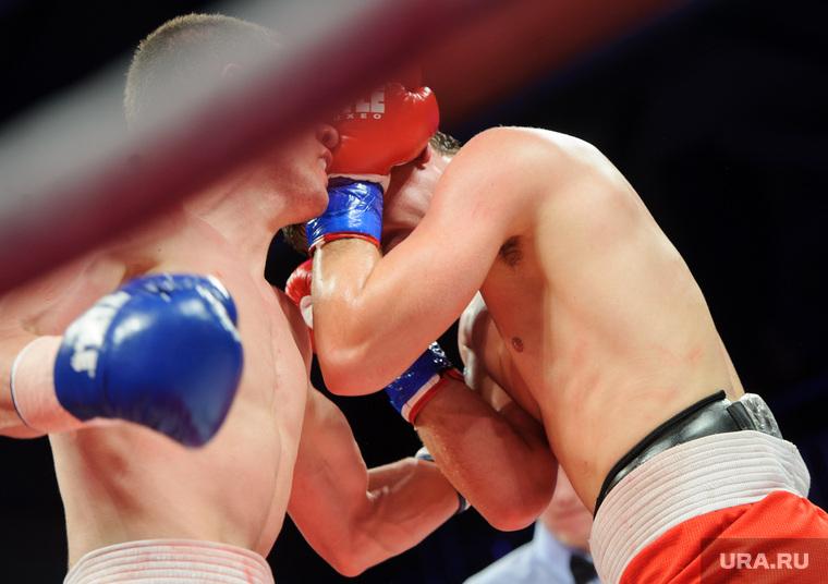 Бокс. Екатеринбург, борьба, единоборства, бокс, поединок