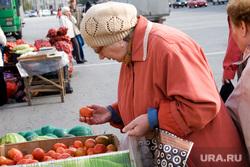 Пресс-конф Печериной об открытии овощной ярмарки, еда, продовольствие, пенсионеры смотрят, овощная ярмарка, рынок