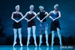 """Репетиция """"Лебединого озера"""" в Театре Оперы и балета. Екатеринбург, балет"""