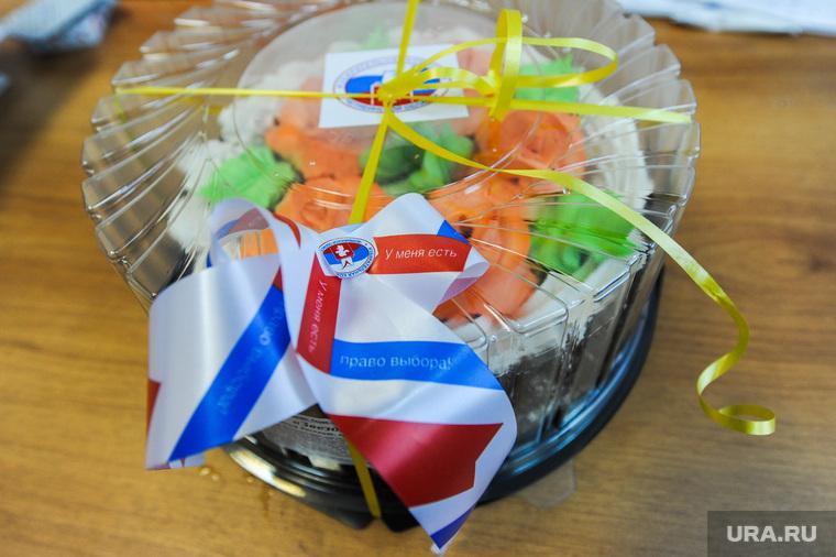 Торт от облизбиркома. Челябинск, торт, избирательная комиссия, облизбирком, выборы, право выбора