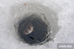 Алекс Клэр рыбачит посреди Екатеринбурга, рыба, прорубь, лунка, хобби, увлечение, подледная рыбалка
