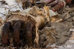 Коммунальная авария в посёлке Мартюш. Свердловская область, тепло, теплотрасса, отопление, трубы без утепления