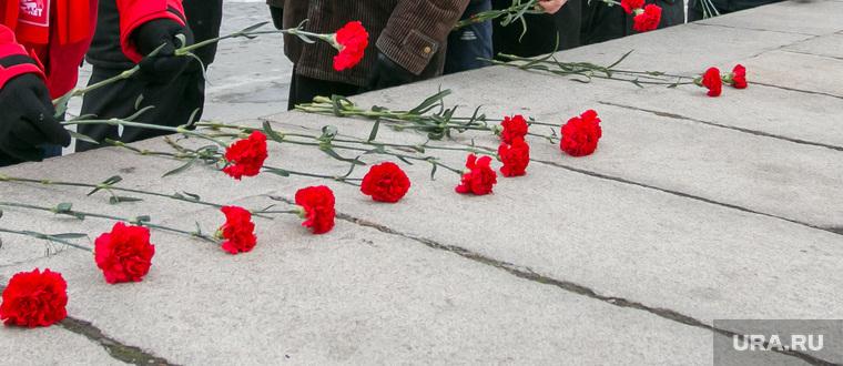 Цветы к памятнику Ленину. Курган, памятник ленину, гвоздики, кислицын василий, кпрф, возложение цветов, 7ноября
