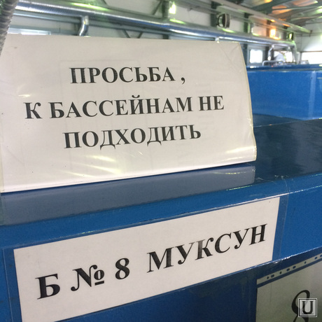 Рыбоводный завод, ХМАО