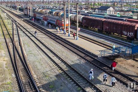 Электричка Войновка-Утешево. Тюмень, рельсы, поезда, железная дорога