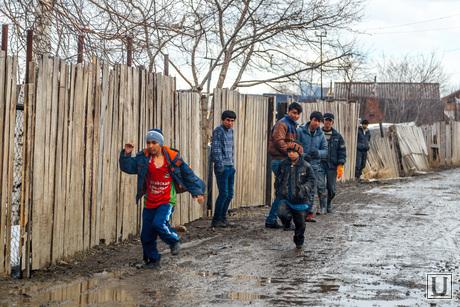 Незаконные мигранты захватили сад