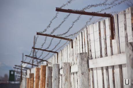 Музей Пермь 36, колючая проволока, забор, зона, ограждение, колония, ния, колония, заключение, тюрьма, лагерь