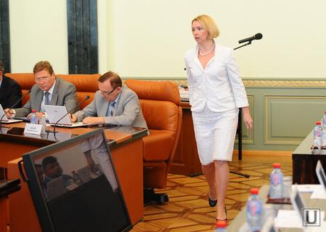 Правительство ЧО. Челябинск., гехт ирина