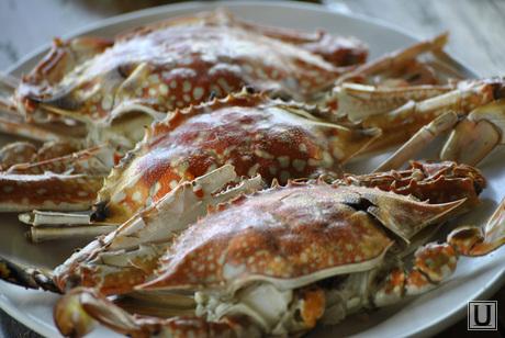 Таиланд, еда, морепродукты, лобстер, краб, деликатес