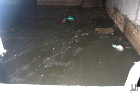 Дом по ул Чкалова 3 Курган, подвал, дерьмо плавает