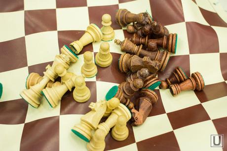 Академия шахмат. Ханты-Мансийск., шахматы, война
