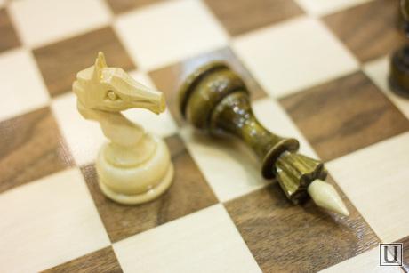 Академия шахмат. Ханты-Мансийск., шахматы, конь