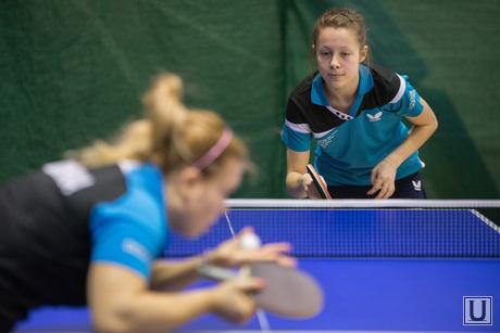 Настольный теннис., настольный теннис, спорт, пинг-понг