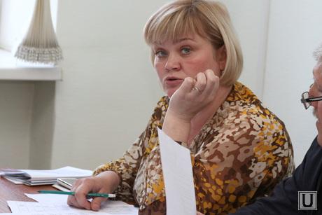Депутатские комиссии гордумы по экономической политике и развитию городского хозяйства Курган, пальшина наталья