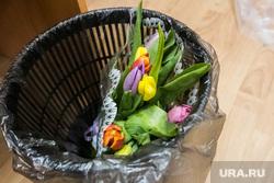 Мусорное ведро. Тюмень, букет, цветы, тюльпаны