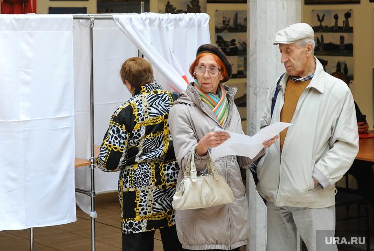 Мякуш. Челябинск, выборы, избиратели