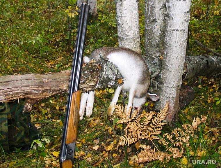 Клипарт. Челябинск., заяц, охота, ружье, добыча