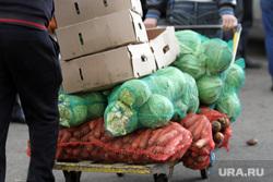 Проблемы на овощебазе №4, овощебаза, капуста, овощи