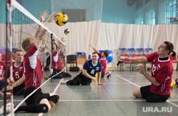 Тренировка паралимпийцев по волейболу. ДИВС. Екатеринбург, тренировка, паралимпийцы, волейбольный клуб родник, волейбол сидя