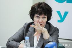 Итоговая пресс-конференция министерства экологии Челябинской области. Челябинск, харина ирина