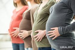 Биткоин, беременность, сейсмология, фекалии, фейспалм, эпикфейл, специальные войска, радиация, КГБ, спецагент, беременные, живот беременной, женщина в положении, пособие по беременности, Декрет